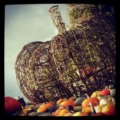 Giant Pumpkin at Slindon Pumpkin Festival