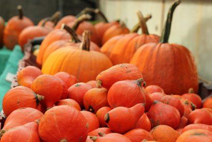 Pumpkin Festival in Slindon