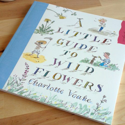 Little Guide to Wild Flowers by Charlotte Voake