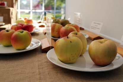 Apple Affair - West Dean Gardens 2011
