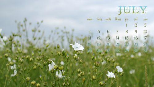 July 2011 Desktop Calendar - Field of Flowers