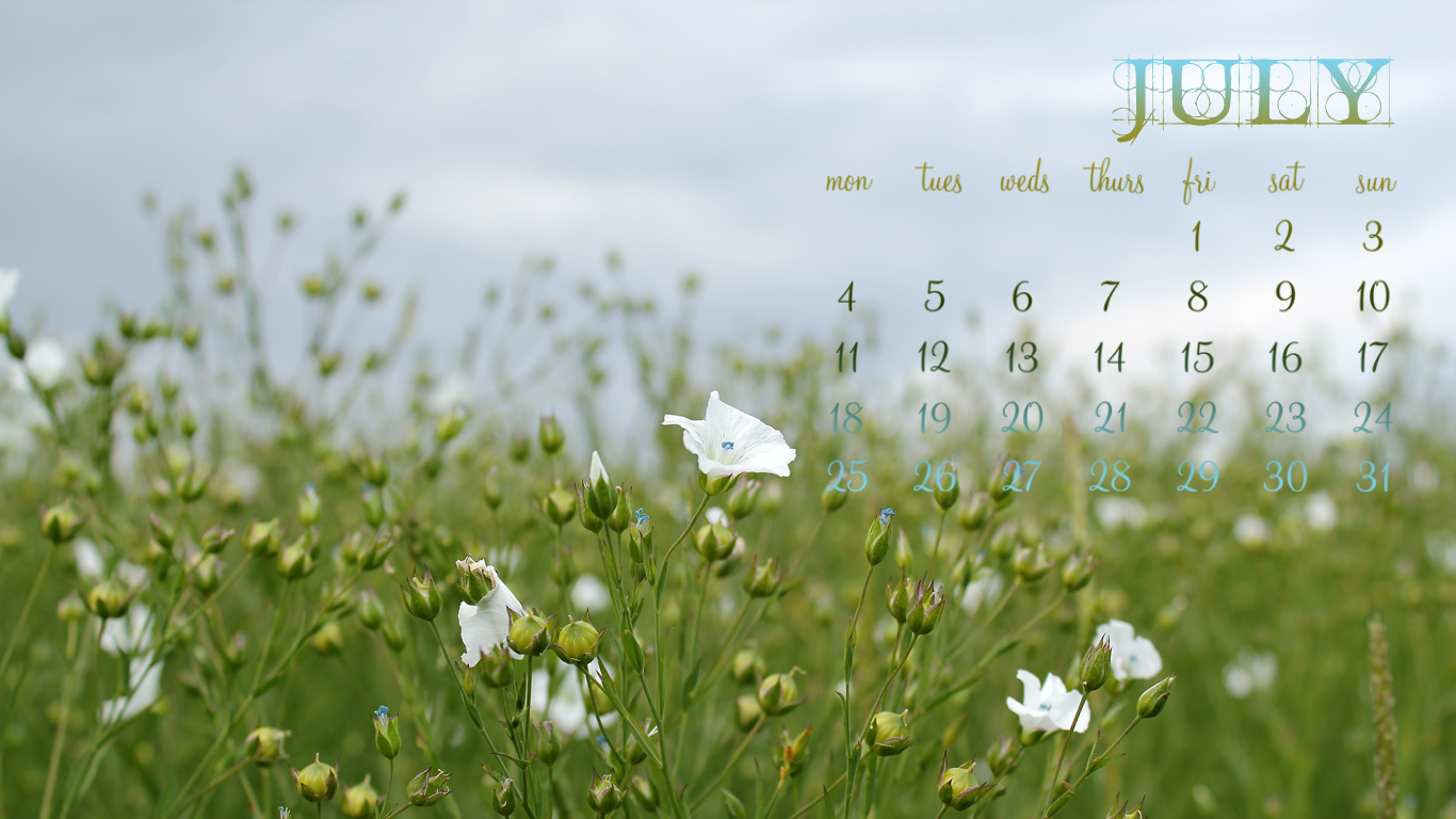 July 2011 Desktop Calendar - Field of Flowers