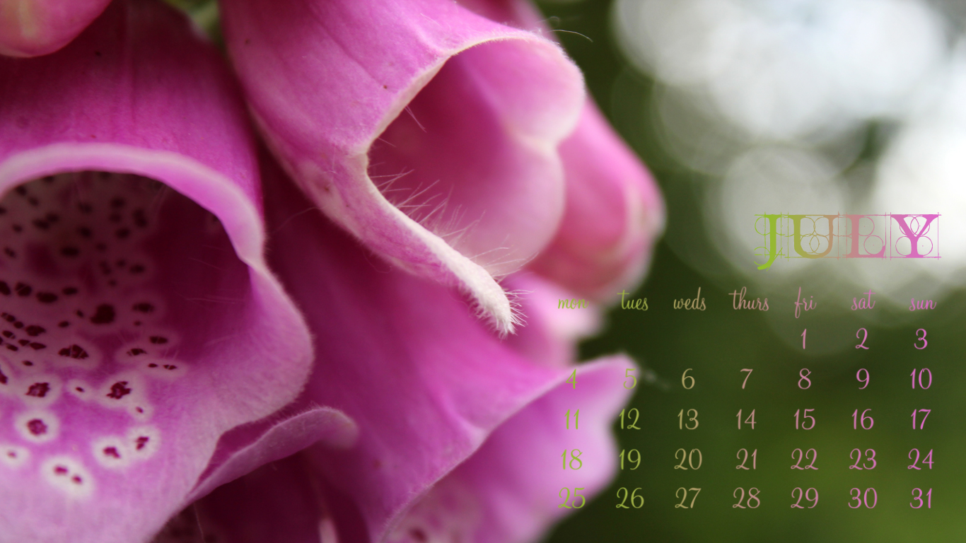July 2011 Desktop Wallpaper - Foxglove