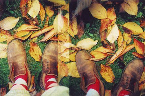 Leaves Lomo 3