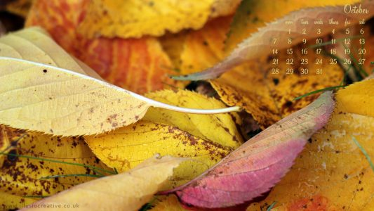 October - 1290 x 1080 - Fall Leaves