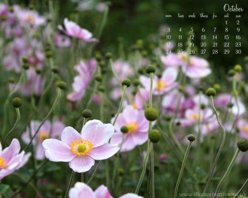 October - Autumn Flowers - 1280 x1024
