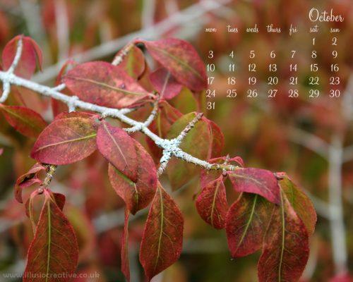 October - Autumn Leaf - 1280 x1024