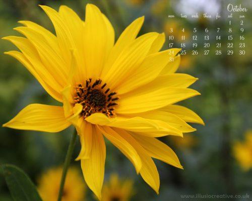October - Autumn Sunshine - 1280 x1024