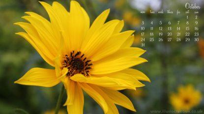 October - Autumn Sunshine- 1366 x 768