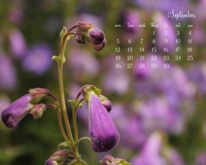 September Desktop Calendar II - 1280 x1024